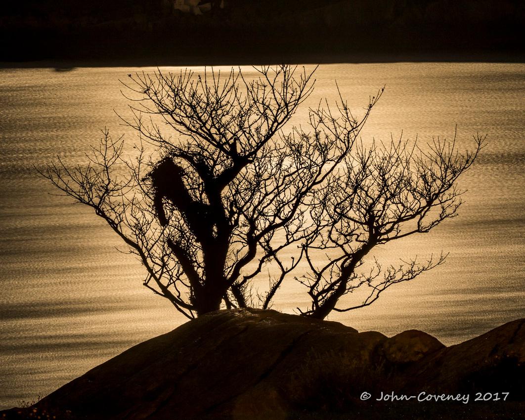 03-Moonshots-©2017-John-Coveney