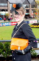 11-Punchestown 2012  by John Coveney