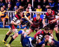005-Leinster-vs-Edinburgh-©-2016-John-Coveney
