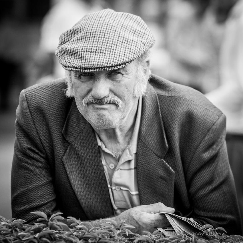 043-Navan-2016-summer-races-©-2016-John-Coveney