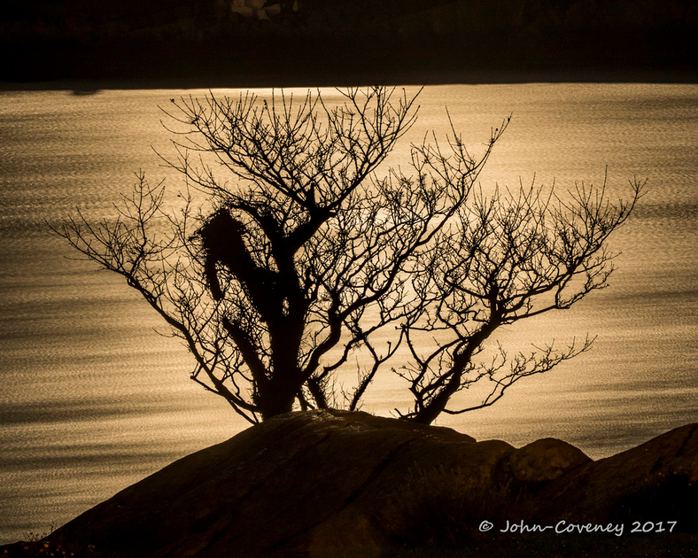 03-Moonshots-©2017-John-Coveney