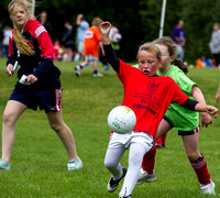 2013-Mini-All-Ireland